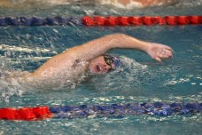 Photo credit by Michael Balestra Sophomore Thomas Soregaroli swim to victory for the Queens College Knights.